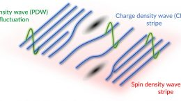 Untangling Three Exotic States in a High-Temperature Superconductor