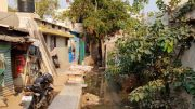 Untreated Wastewater Near Settlements in Hyderabad