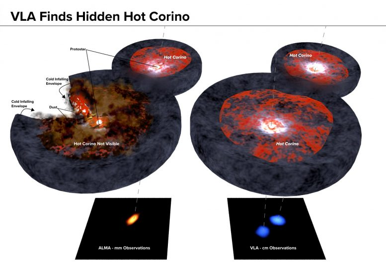 VLA Finds Hidden Hot Corino