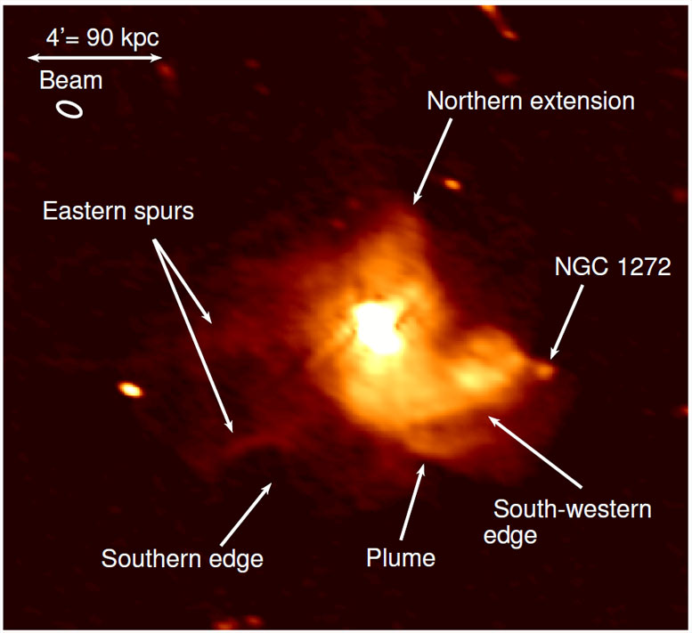 VLA Observations of the Mini-Halo in the Perseus Cluster