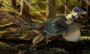 Velociraptors Were Most Likely Covered in Feathers