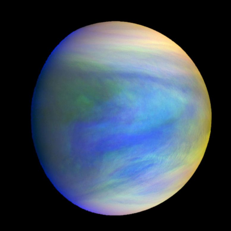 Venus a Possible Niche for Extraterrestrial Microbial Life