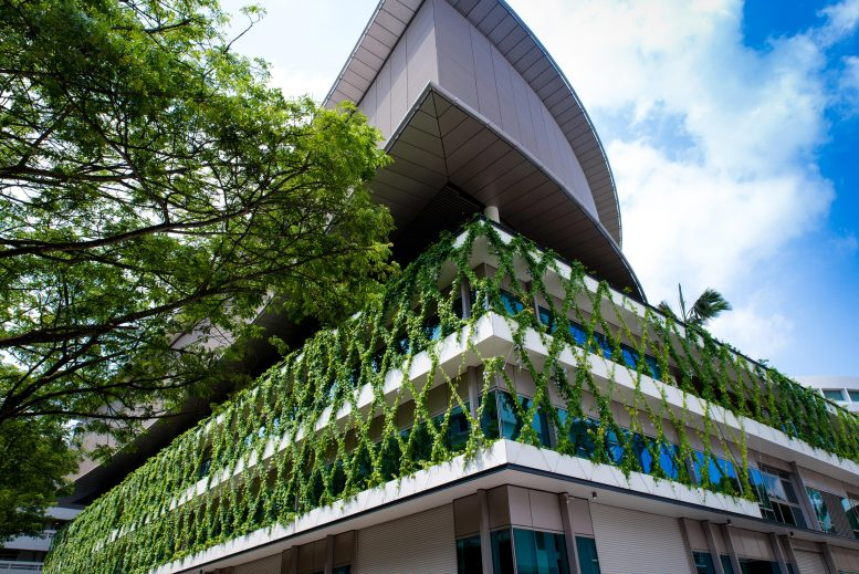 Vertical Greenery Can Act as a Stress Buffer
