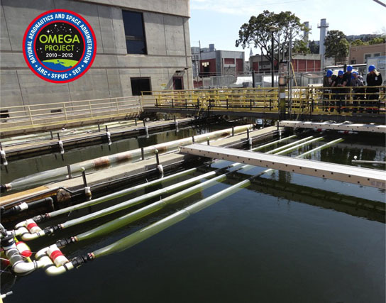 Wastewater with oil-producing algae circulate through photobioreactors