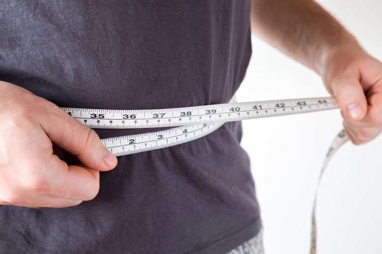 Weight Loss Belly Fat Concept