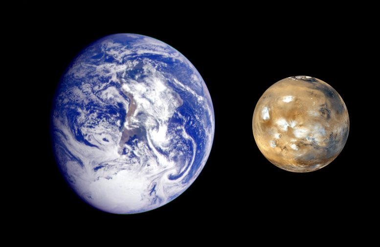 What Planetary Siblings Can Teach Us About Life