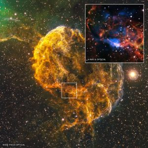 What Spawned the Jellyfish Nebula?