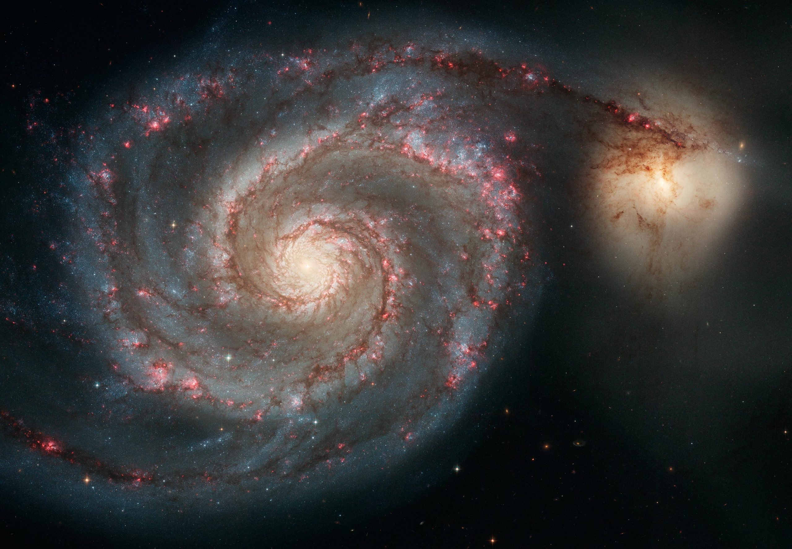A Sparkling Stretched Spiral and Stunning Out-of-This-World Galaxies Imaged by Hubble - SciTechDaily