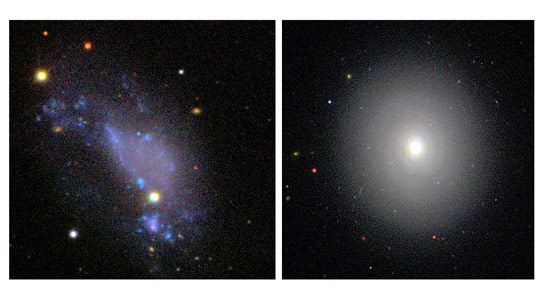 Why Disk Galaxies Look Alike