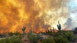 Wildfires Mesa Arizona
