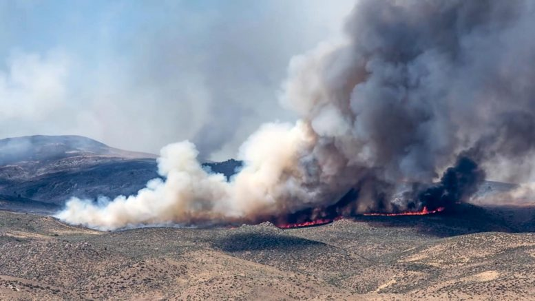 Wildfires on the Patagonian Steppe