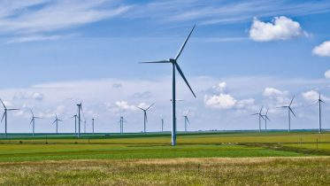Wind Farms Cause More Environmental Impact Than Previously Thought