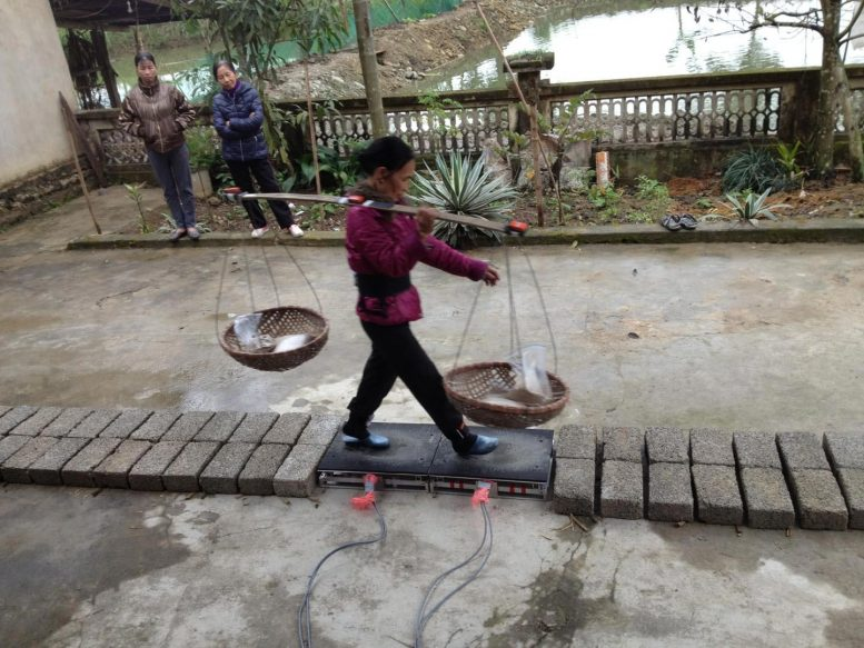 Woman Carrying Heavy Load Flexible Bamboo Pole