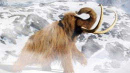 Woolly Mammoth Rendering