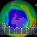 Worldwide Action to Phase Out Ozone-Depleting Substances Has Remarkable Success