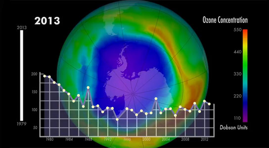Worldwide Action to Phase Out Ozone-Depleting Substances Yields Significant Gains