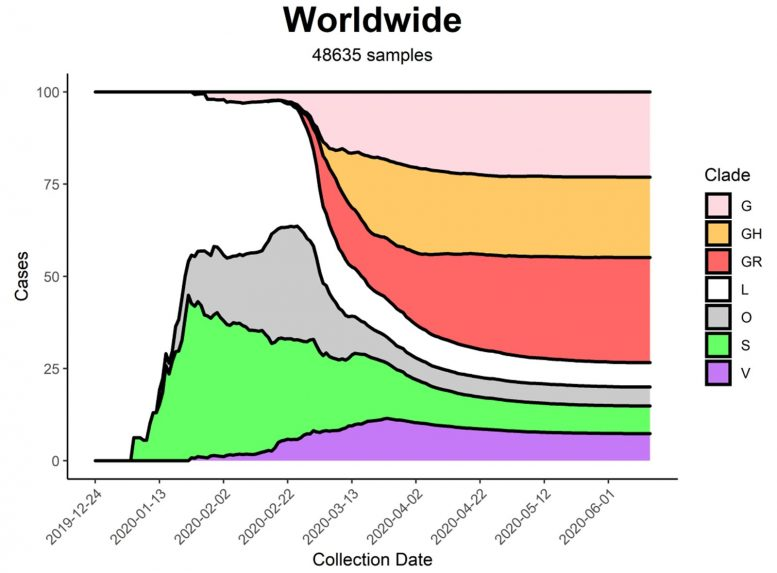 Worldwide Distribution of the SARS CoV 2 Six Strains