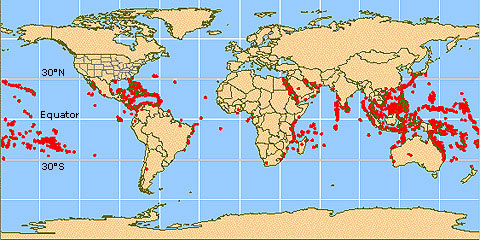 Worldwide coral reefs occur between 30°N and 30°E