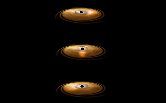 "XMM-Newton Proves the Existence of a ""Gravitational Vortex"" Around a Black Hole"