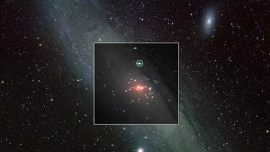 XMM-Newton X-ray data onto an optical view of the Andromeda galaxy