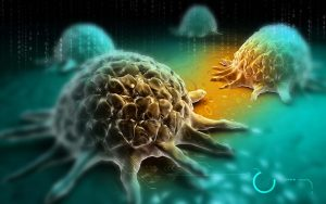 Yale Study Provides New Clue to How Cancer Cells Spread