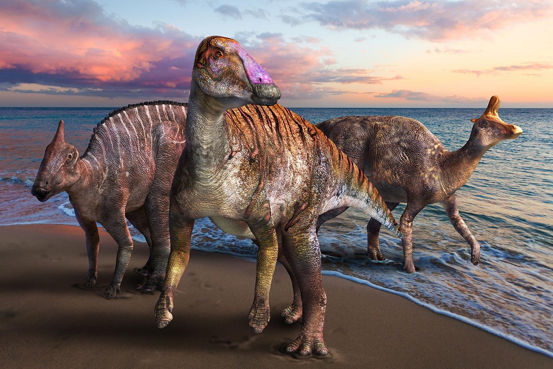 Yamatosaurus: New Duckbilled Dinosaur Discovered in Japan