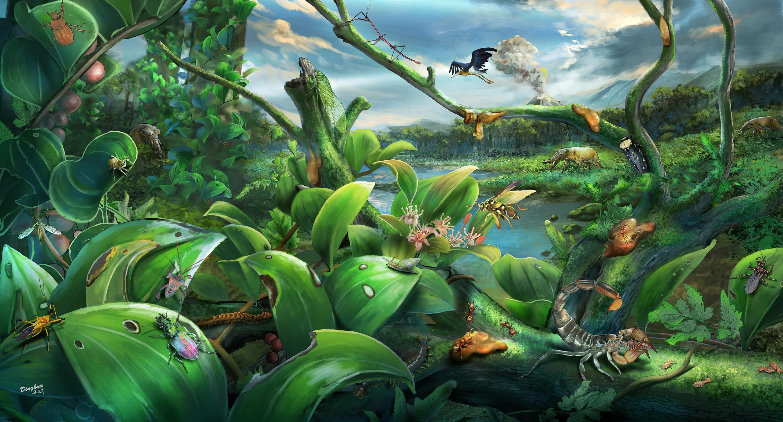 Extraordinary Species Diversity Within a 14.7 Million-Year-Old Tropical Rainforest and Sheds Light on Evolution