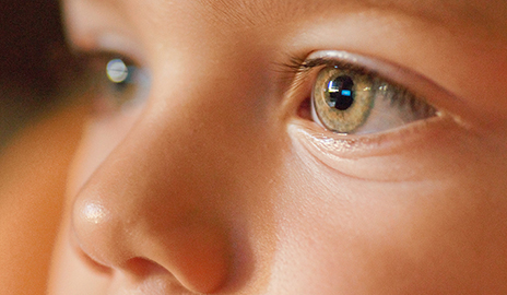 Zika and Glaucoma Linked for First Time