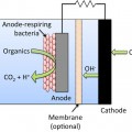 basic setup for a microbial fuel cell