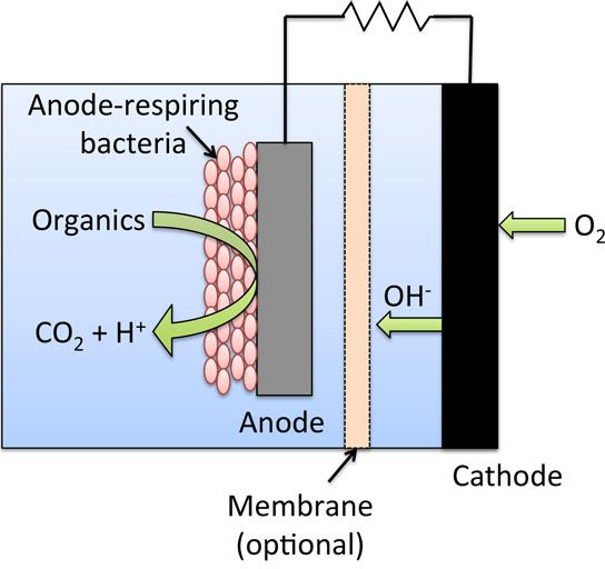 Converting waste into useful energy by improving microbial fuel cells