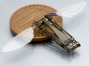 butterfly research will aid the development of flying bug-size robots.