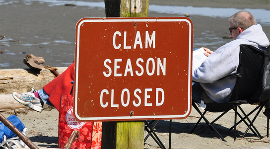 clam-season-closed