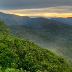 Sunrise over the cloud forests of Monteverde, Costa Rica. Credit: Drew Fulton