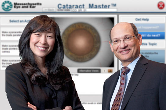 computer-based simulation tool the Cataract Master