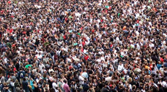 crowds-intracellular-crowding