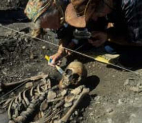 genetic variation of today's Europeans was strongly affected by immigrant Stone Age farmers