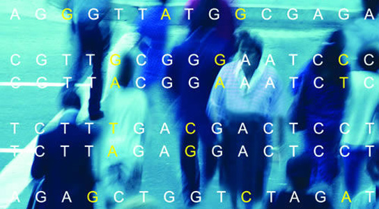 The United Kingdom will sequence the whole genomes of 100,000 people with cancer and rare diseases. Credit: U.S. Department of Energy/Office of Biological and Environmental Research
