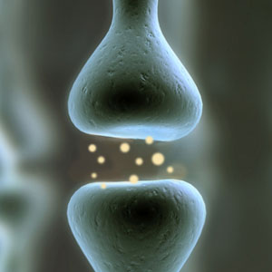 graphic depicting a synapse, a connection between brain cells