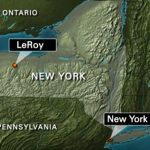 leroy-new-york-mystery-tourette