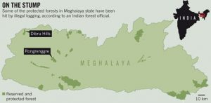 meghalaya-forest-cover