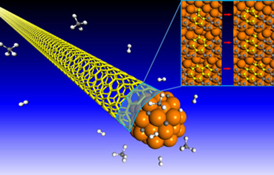 nanotube growth