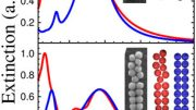 parallels between nanoparticle arrays and polymers
