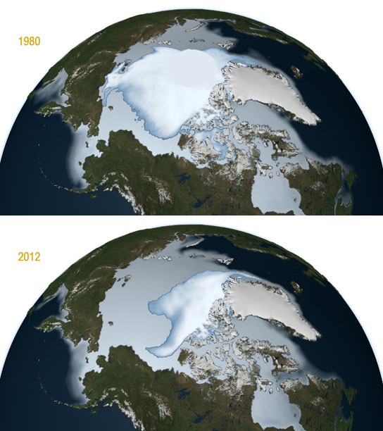 perennial sea ice has declined from 1980 to 2012