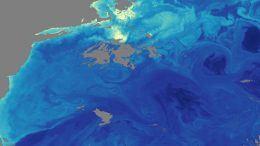 satellite-image-gulf-stream