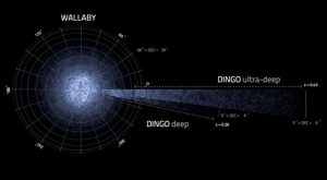 simulated galaxies ASKAP surveys WALLABY and DINGO are predicted to find