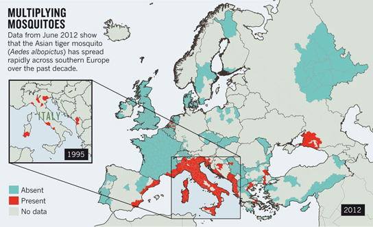 spread-mosquito-europe