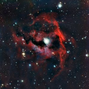 the-head-part-of-the-Seagull-Nebula