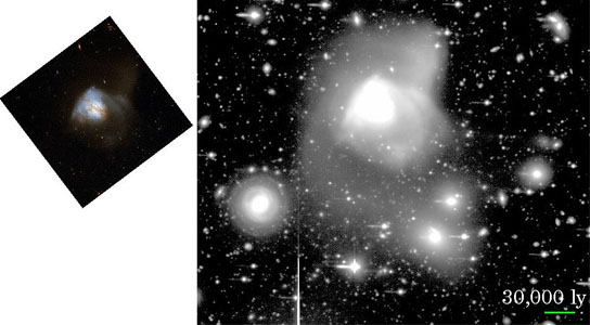 ultraluminous infrared galaxy (ULIRG) Arp 220 developed from a multiple merger