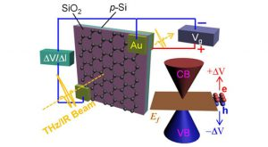 voltage applied to a sheet of graphene on a silicon-based substrate can turn it into a shutter for both terahertz and infrared wavelengths of light