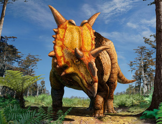 Dinosaurs Jurassic Xenoceratops, A New Species of Horned Dinosaur Discovered in Canada Xenoceratops-wild